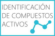 Identificación de compuestos activos