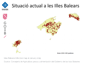 Islas Baleares Xf infection map